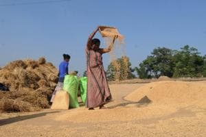 Budget: A four-point checklist for rural India