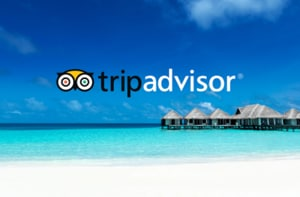 TripAdvisor cuts 200 jobs as Google steps up competition with new travel search tools