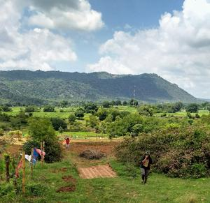Startups are helping city buyers invest in farm plots, agro-forests