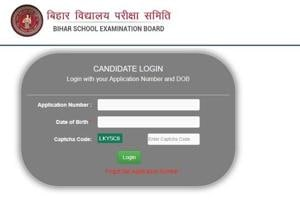 BSEB dummy admit card for D El Ed Joint Entrance Test 2020 released at biharboardvividh-com