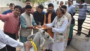 Dinesh Shahra Foundation conducts Gau Shakti Abhiyan at Kanha Upvan Gaushala near Banaras