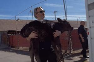 Joaquin Phoenix saved cow and her calf from slaughterhouse day after his Oscar win- Watch