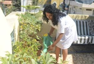 Home plants not growing well ? A gardening consultant can help