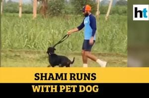 Watch: Mohammed Shami sprints with his pet dog, shares video online
