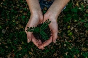 World Nature Conservation Day 2020: History, Significance, How to live sustainably