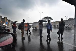 Light to moderate rains continue to lash in parts of Rajasthan