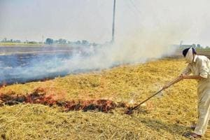 Farm fires growing in Punjab, plumes of smoke seen over Delhi in satellite images