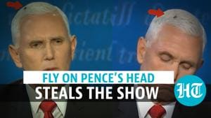 Watch: The fly that set Twitter abuzz during VP debate between Pence & ...