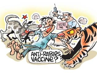 Battlelines drawn in UP: It is candidates vs cats and dogs