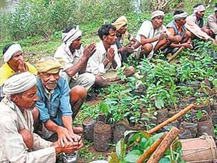 Rules to bypass forest law for tribals in BJP-ruled states?