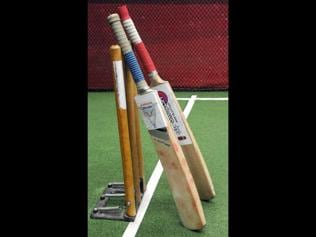 cricket bat industry