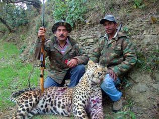 Uttarakhand hunter outdoes great Corbett; guns down 45 man-eaters