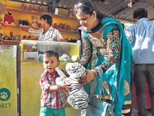 Toy story: Delhi zoo white tiger Vijay becomes must-have for visitors