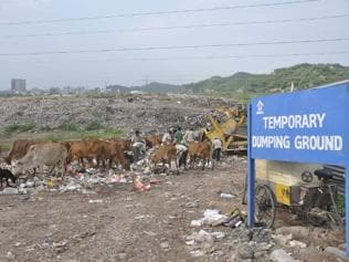 Solid waste management: Firm implements project in rush; no equipment, bins