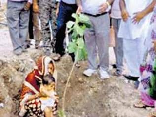 A Rajasthan village which celebrates each girl child with 111 trees