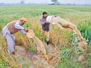 Land acquisition: First, sow the seeds of security among farmers