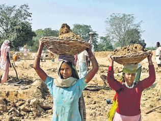 Rural labour market goes from boom to bust