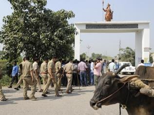 Bisada lynching: Govt frames guidelines to dispose of cow carcass