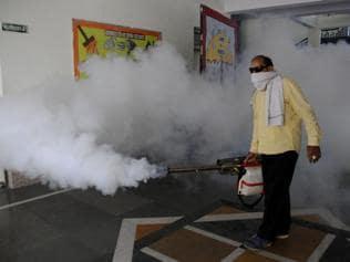 Dengue cases near 10,000 mark, 5 deaths in as many days