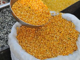 Speculation adding to soaring pulse prices, allege traders in Indore