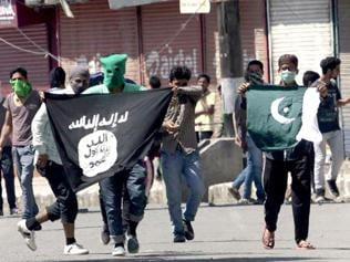 Islamic State influenced very few Indian youths, says government
