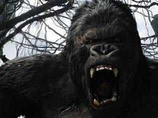 Beauty didn't kill this beast: How the real King Kong went extinct