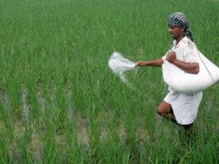 Union Budget: Organic farming proposal means little for Punjab
