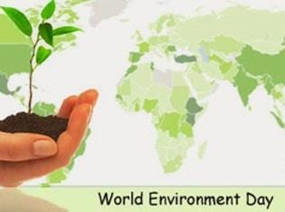 Five easy ways to go green without actively changing your lifestyle