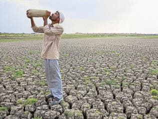 Drought will cost India $100 bn. Here's how industry can weather the storm