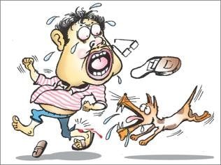 With over 10 lakh cases in 2 years, dog bites Bihar's fourth largest health menace