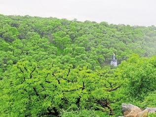 Govt makes a U-turn on move to amend national forest policy