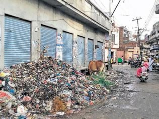 Garbage heaps dot Moga as hired firm stops work