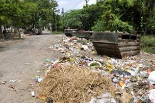 Wanted: Hercules to clean the Augean stables of Ranchi