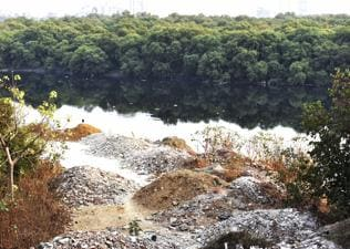'Destruction of forests is weakening later stages of monsoon'