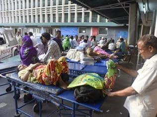 Chikungunya hasn't killed anyone, says Delhi govt as it spars with L-G