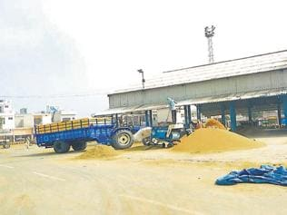 Private traders purchasing paddy much below MSP