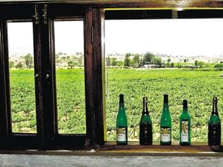 Sula grows as young India takes to wine