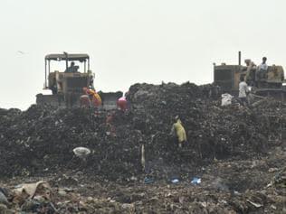 Soil around Mumbai's garbage dumps contains hazardous levels of mercury: Study
