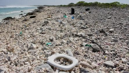 Plastic dumped in Pacific Ocean bigger than France, Germany, Spain  combined, shows study - environment - Hindustan Times