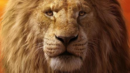 The Lion King Movie Review The Greatest Visual Effects Spectacle Since Avatar A Monument To Hollywood Excess Hollywood Hindustan Times