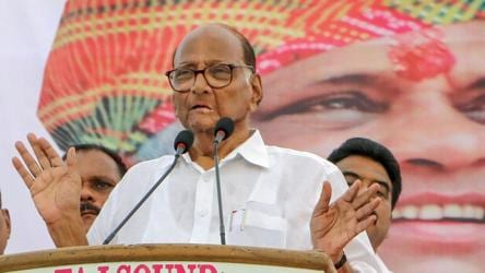 'You will run govt or cook?' Pawar on Sena's Rs 10 meal poll promise