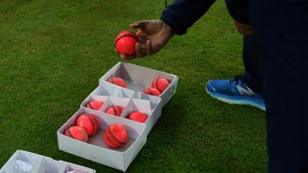 Exclusive: Ahead of D/N Test, BCCI to get 'home-made' pink balls by weekend