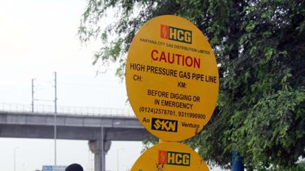 Govt seeks to bring states on board for piped gas project