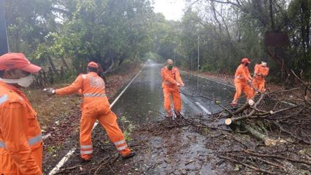 NDRF deploys 43 teams as Cyclone Nisarga makes landfall in Maharashtra's Raigad