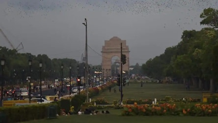 Thundershowers likely in Delhi today, light rain expected over the weekend
