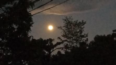 Lunar Eclipse 2020: Twitter in awe as Strawberry Moon graces the night sky