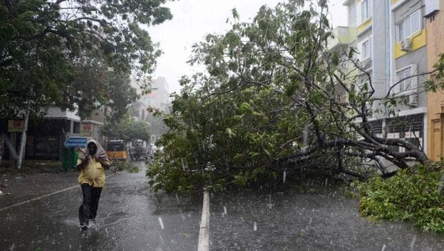 A man walks along a street covered with debris and fallen trees in Chennai as Cyclone Vardah made landfall on Sunday.(AFP Photo)