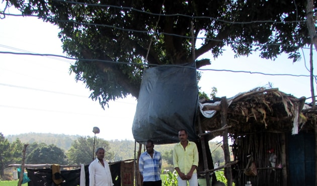 Family members of Pratap Lodhi, the farmer who was killed, at the disputed land at Raghogarh in Dewas district.