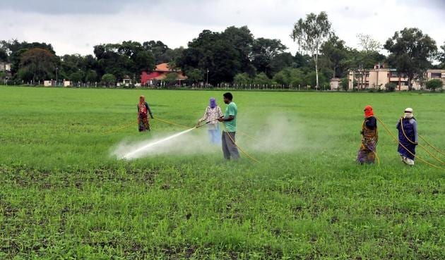 In climate-smart villages, the farmers would be encouraged to go for short duration variety of crops, in addition to using drought-resistance seeds.(HT file photo)