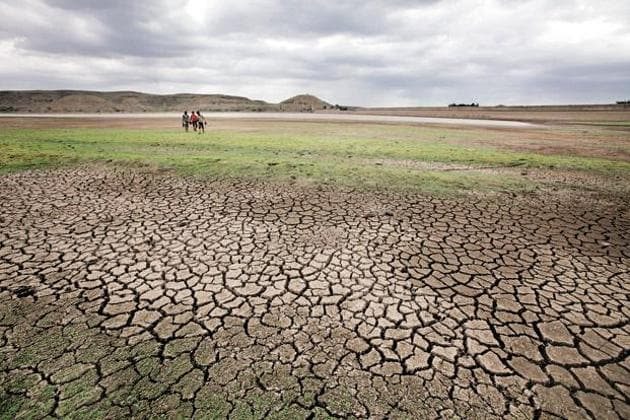 Tamil Nadu chief minister O Panneerselvam declared the entire state as drought-hit on Jan. 10, 2016.(HT Photo)